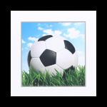 Wenskaart WK 5 Voetbal Blanco Won